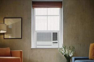 Friedrich Chill 6,000 BTU Window Air Conditioner