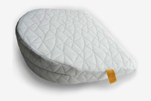 Jill & Joey Pregnancy Pillow Wedge